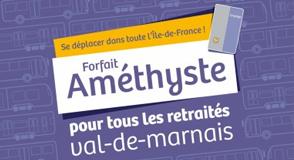 Depuis le 1er janvier 2018, tous les retraités du Val-de-Marne peuvent bénéficier d'une réduction de 50% sur leur forfait Navigo.