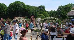 """Les 2 et 3 juin, vous avez """"Rendez-vous aux jardins"""" au parc du Plateau (Champigny) et à la Roseraie (L'Haÿ-les-Roses) pour des visites commentées et des ateliers."""