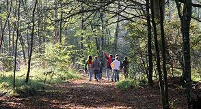 Mercredi 5 décembre à Yerres, partez le long de la Tégéval pour découvrir ses aménagements, sa faune et sa flore.
