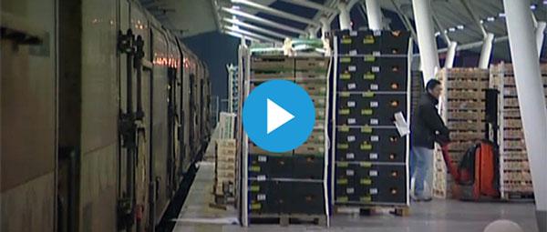 La mobilisation peut sauver le train des primeurs Perpignan-Rungis