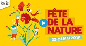 """Dès 22 le mai, c'est la Fête de la Nature dans le Val-de-Marne! Sur le thème """"La Nature en Mouvement"""", venez arpenter et explorer les parcs et espaces naturels du département."""
