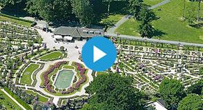 Samedi 8 et dimanche 9 juin, les animations battent leur plein à la Roseraie départementale avec le spectacle couleur Nougaro et Rendez-vous aux jardins.