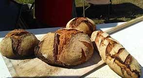 Participez à un atelier pain bio gratuit au parc des Lilas. Rendez-vous dimanche 23 février!