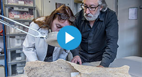 Mercredi, c'est archéologie! Le 4 mars, venez découvrir le parcours d'un objet après la fouille, dans les coulisses du service archéologie...