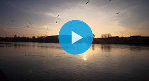 À l'occasion de la journée internationale d'action pour les rivières, découvrez en images les 8 cours d'eau du Val-de-Marne